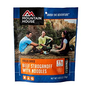 Mountain House beef stroganoff with noodles pouch