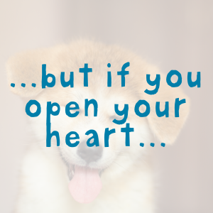 ...but if you open your heart...