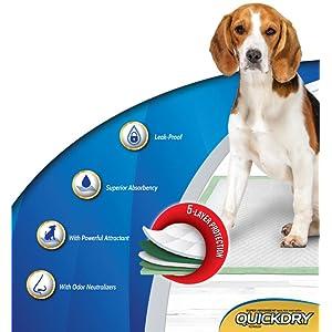 Glodenbridge Universal Autositzschoner Urin Pad Schnell Dry T/öpfchen Training Sitz Saver Pads f/ür Baby und Kleinkinder Unterst/ützung Maschine Waschen