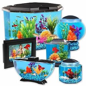 Fish tank aquariums