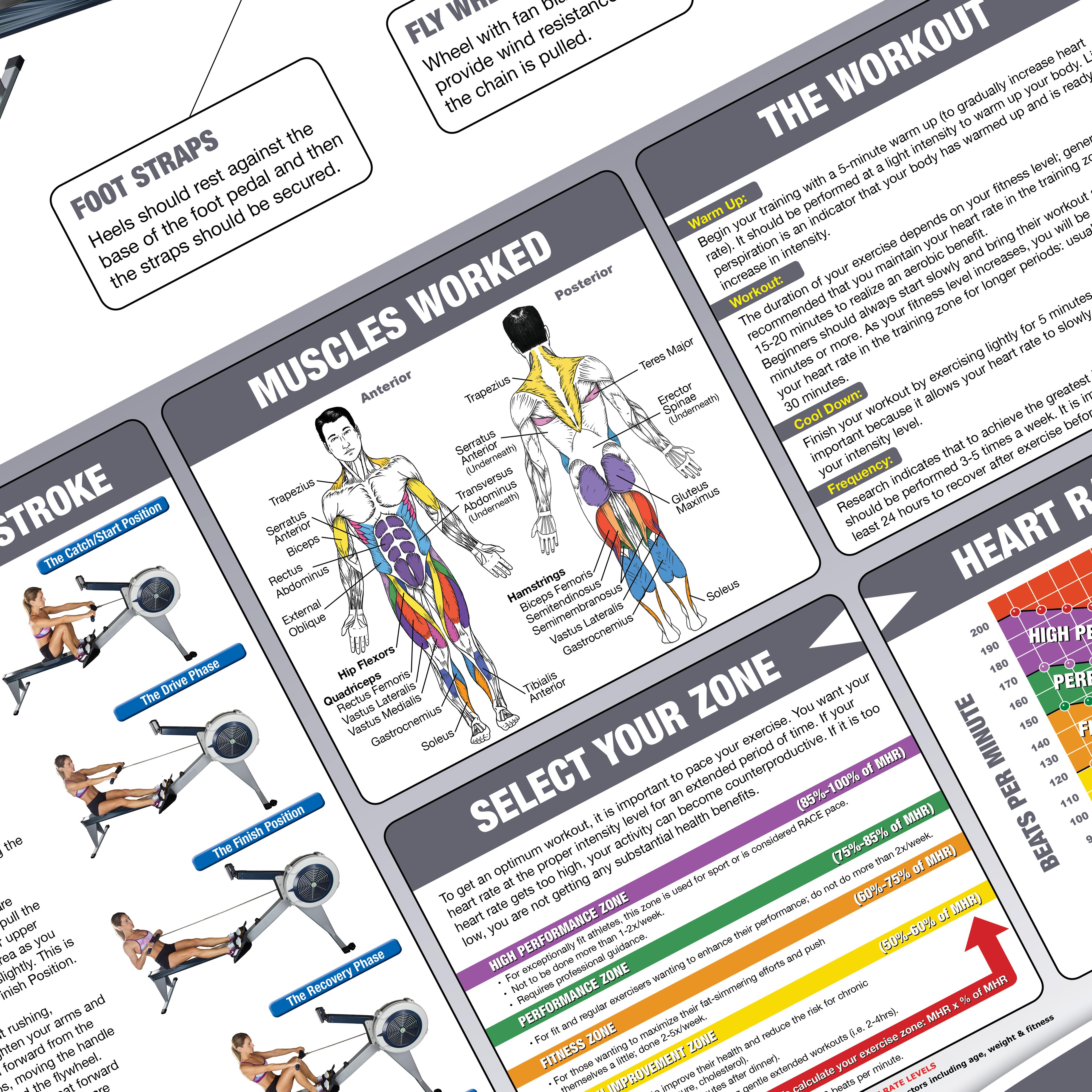 Amazon buy rowing machine posterchart how to use a rower how view larger fandeluxe Gallery