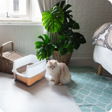 Cat Litter box taupe