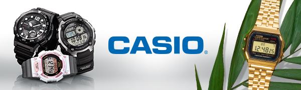 Casio Header