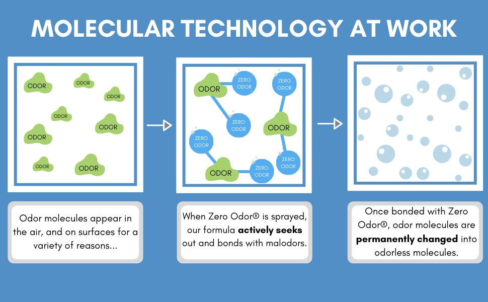 Molecular Technology