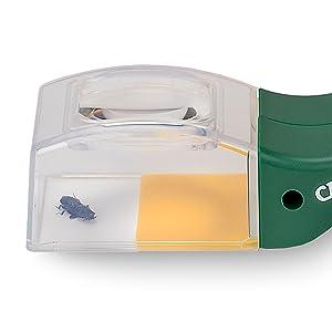 Carson Lupa Cazadora de Insectos BugView HU-10: Amazon.es: Oficina y papelería