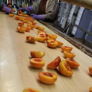 Peach Processing Fruit Factory