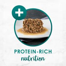 Protein rich nutrition