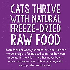 Natural Freeze-Dried Raw, Raw Food for Cats, Stella & Chewy's Freeze-Dried Raw for Cats