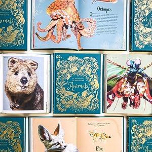 anthology of intriguing animals