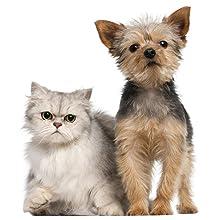 robot, aspirador, roomba, aspiradora, limpieza, pelos, mascotas, perros, gatos, alergia