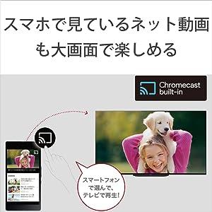 外出中スマートフォンで視聴していたネット動画を、家では大画面のブラビアに映し出すことができ、迫力のある映像を楽しめる。