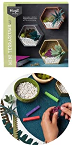 diy felt succulent terrarium décor for your room or home easy craft kit for teens tweens adults
