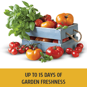 fresh,vegetables,refrigerators, fridge
