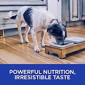 powerful nutrition irresistible taste