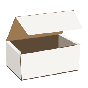 white shipping boxes; cardboard mailers; cardboard boxes for gifts; small cardboard gift boxes;