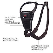 halti no pull harness