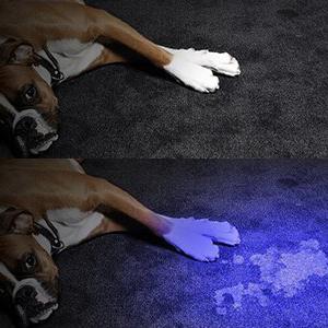 Luz negra para la detección de orina en mascotas