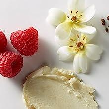 burts bees sweet violet;burts bees sweet violet lip balm;violet lip balm;natural lip balm;burt