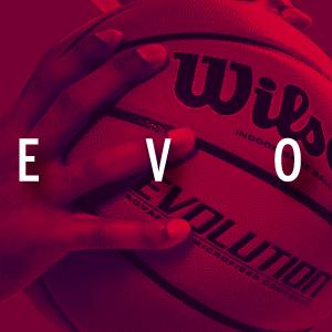 size 7 basketball; 29.5 basketball; wilson basketball; wilson; wilson 29.5 basketball; wilson ball
