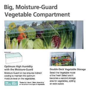 Hitachi Big, Moisture-Guard Vegetable Compartment,Hitachi Refrigerator , 2 Door Refrigerator,Freezer