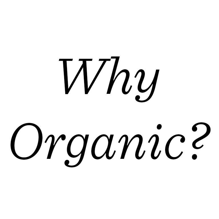 Amazon.com: Nutre la crema orgánica para el aceite de la ...