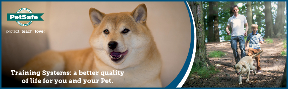 PetSafe Training System Anti Bark Remote Trainer Dog Puppy Collar Remote Trainer Spray