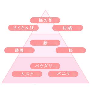 梅の花 さくらんぼ 柑橘 バラ 藤 桜 パウダリー ムスク バニラ