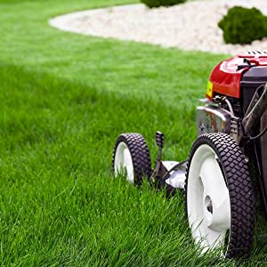 Miracle-Gro Lawn Thickener Grass Seed & Feed is easy to apply