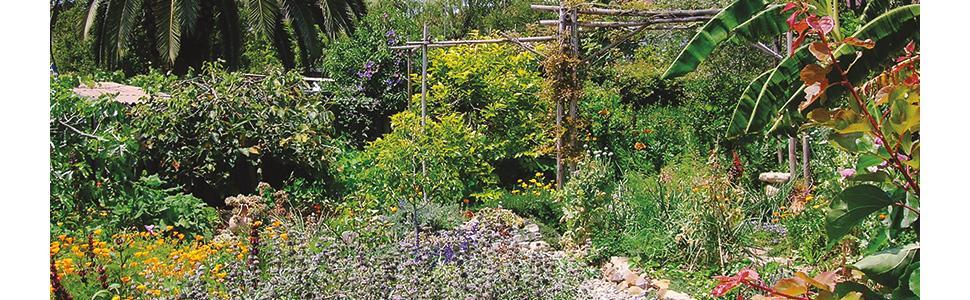 soil fertility; landscape; habitat; edible forest; permaculture