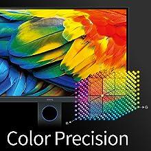 Color Precision
