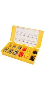 ProLube 43980 SAE Grease Fitting and Caps Assortment, Yellow Box, 100 Piece