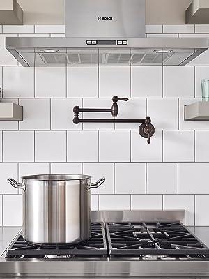 Danze D205057BS Opulence Single Handle Wall Mount Pot