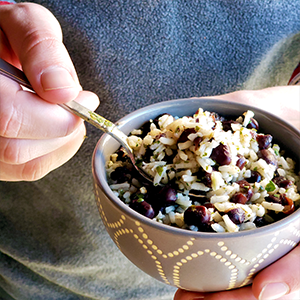 Nutrient Dense Macro Meals
