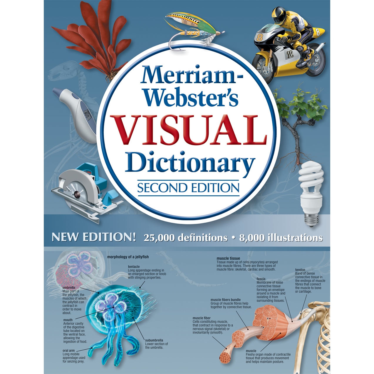 Amazon.com: Merriam-Webster\'s Visual Dictionary, New Second Edition ...