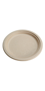 Compostable 9inch plate