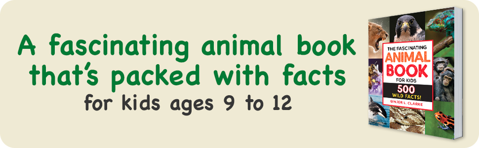 animal books for kids ages 9-12,books for boys age 9 12,girls books ages 9-12,animal encyclopedia