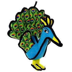 tuffy peacock