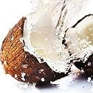 coco; coconut; papaya; aceite coco; aceite solar; bronceador; autobronceador; cuidado piel