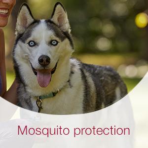 Unlike some competitors, K9 Advantix II kills and repels mosquitoes.