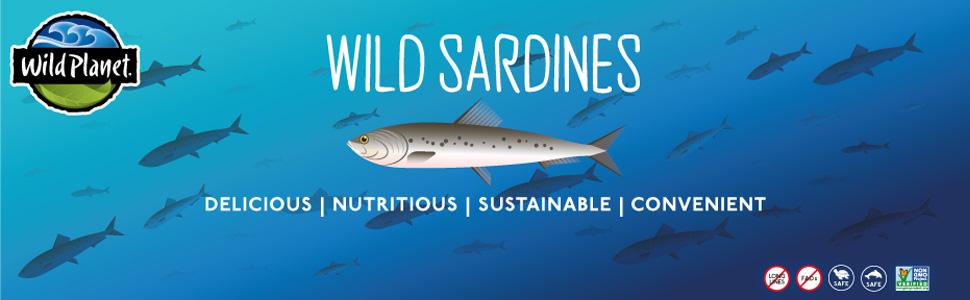 wild sardines. Delicious, nutritious, convenient