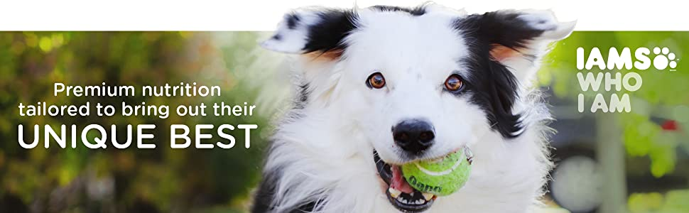 Premium Nutrition Tailored to Bring Out Their Unique Best, Iams Who I am, Dog, Ball, Health, Kibble