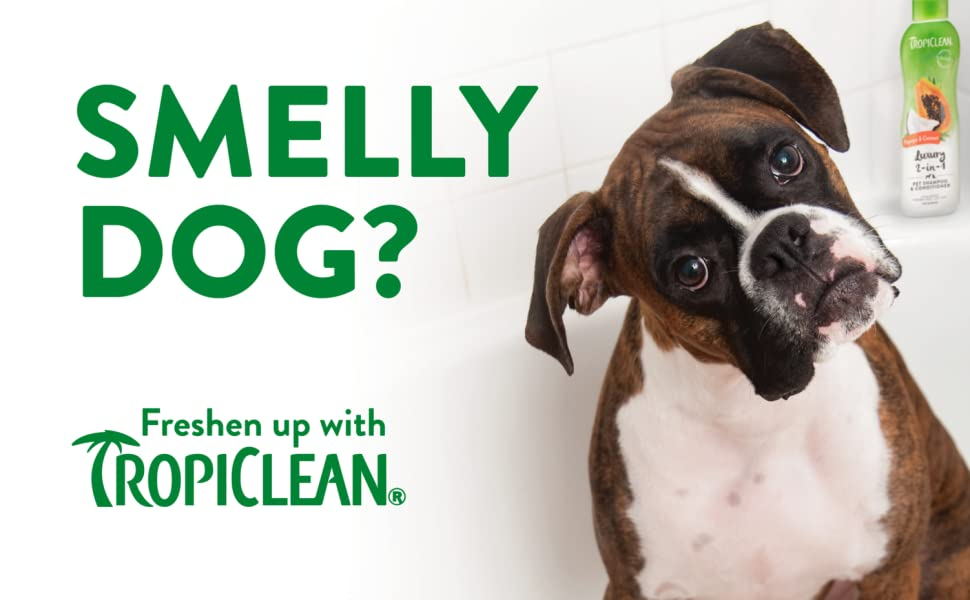 smelly dog, freshen up with TropiClean