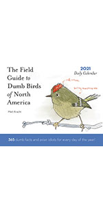 dumb bird
