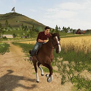 FS20 Horse