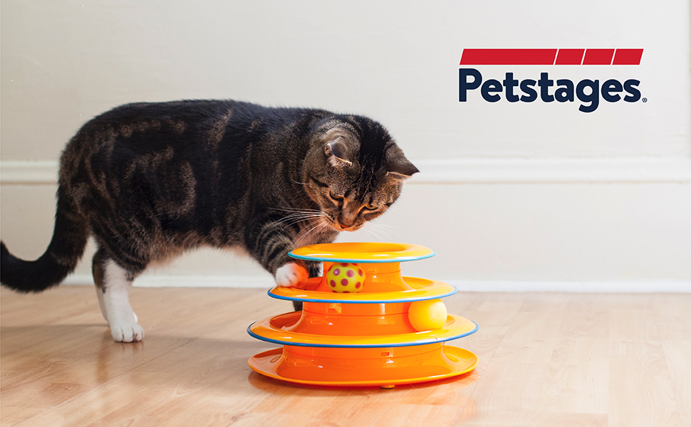 cat playing with petstages cat track interactive toy