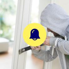burglar, intruder alarm, siren, canary pro, home security camera
