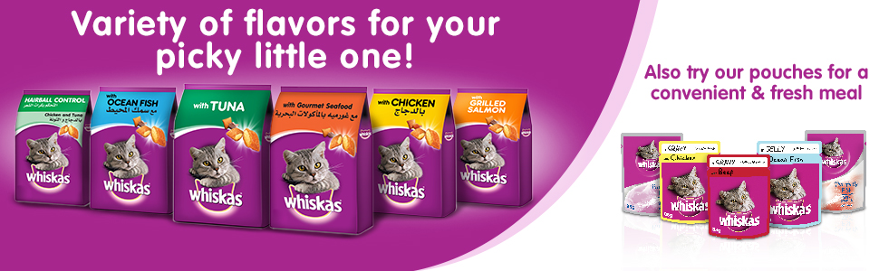Whiskas, Whiskas cat food, Whiskas cat dry food, dry food