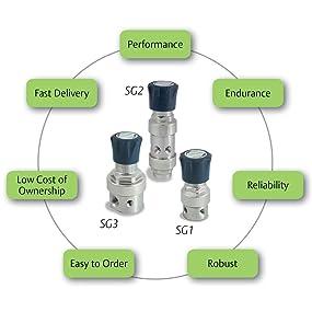 SST Body//Diaphragm TESCOM SG162151-05AP0 SG1 Single-Stage Pressure Regulator 0.06 CV Gauges Teflon Seals CGA 590 0-25 PSIG Out 5 Port
