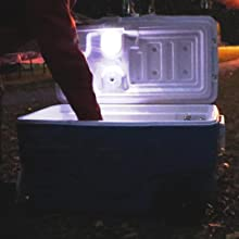 cooler, light, auto, find, lid, automatically, stick, battery, illuminate, tool, toy, storage