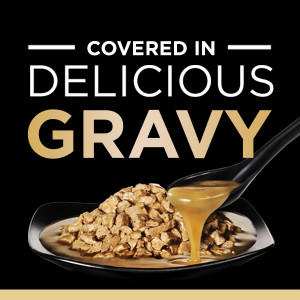 covered in Delicious Gravy